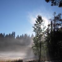 Tioga Pass Morning Mist