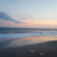 Hilton Head Sunset (1)
