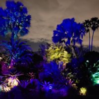 Fairchild Night Garden