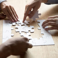 Diverse_Hands_Jigsaw_Puzzle